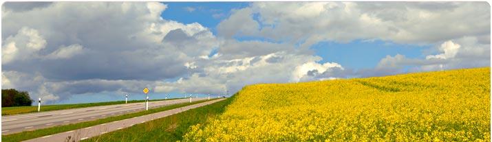 Känn friheten av att röra dig på dina egna villkor på resan i en hyrbil från Hertz!