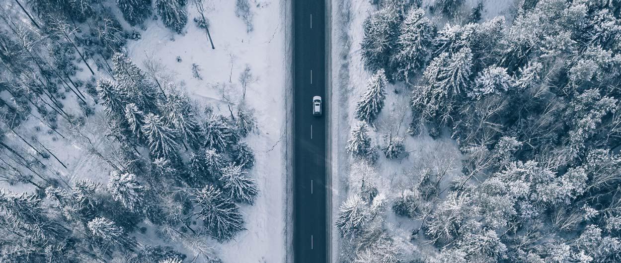 Resa bort över jul i Sverige
