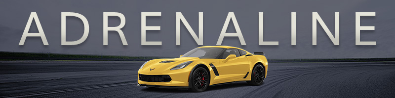 Sports Car Rental Adrenaline Collection Hertz