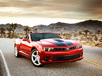 Book an Official Government Car Rental. Book a Leisure Car Rental with Your Government or Military CDP. Your Hertz Rental Car Discount Code (CDP) will be pre-populated.