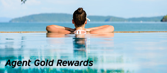 Agent Gold Rewards - Hertz Rental Car