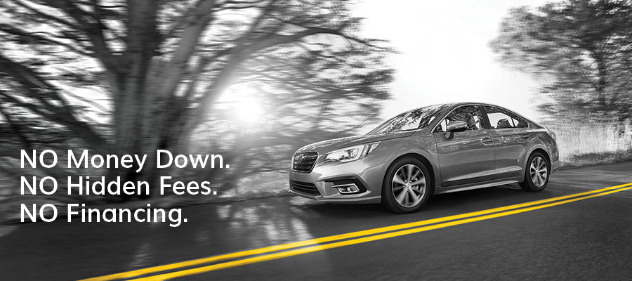 A gray Hertz rental car drives on a paved road between a double yellow line and rows of trees.